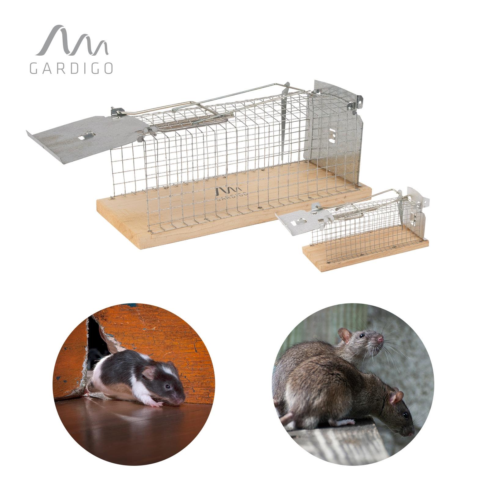 mausefalle rattenfalle k fig kombiset lebendfalle ratten. Black Bedroom Furniture Sets. Home Design Ideas